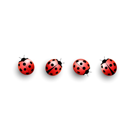 lady cow: Four lady bugs with shadows on white background