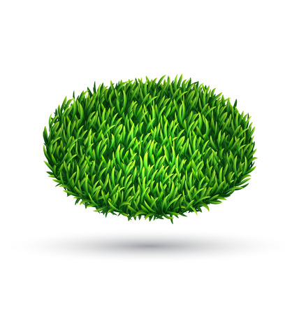 Green grass oval with shadow isolated on white background
