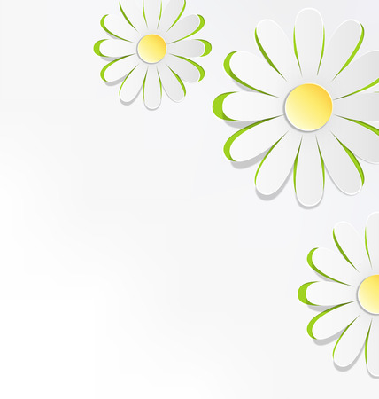 chamomiles: Three cutout chamomiles on grayscale. Floral spring abstract background Stock Photo
