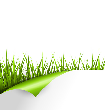 Green grass with wrapped paper sheet isolated on white background. Floral eco nature background