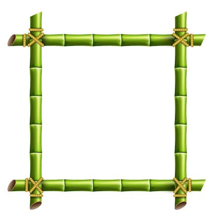 Green bamboo frame isolated on white background Imagens