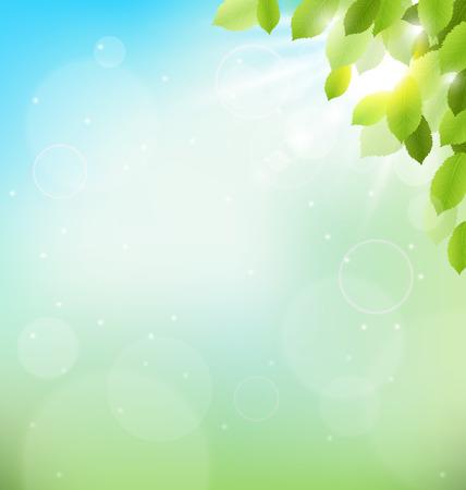 arbol de pascua: Follaje del árbol con la luz del sol en el cielo. Naturaleza floral de primavera fondo