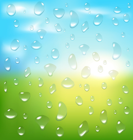 dewdrop: Abstract spring background with sunrise grass and drops
