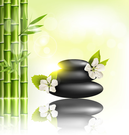 spring balance: Stack of spa stones with cherry white flowers sunlight and bamboo with reflection on light-green background
