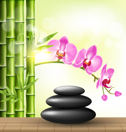 spa stones: Stack of spa stones with orchid pink flowers and bamboo and sunlight on light-green background
