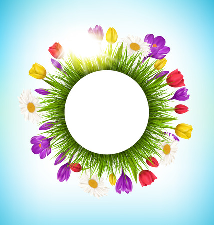 grass flowers: Circle frame with green grass flowers and sunlight Illustration