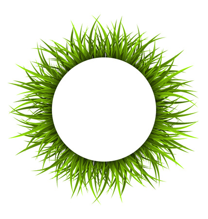 sedge: Circle frame with green grass. Floral nature background