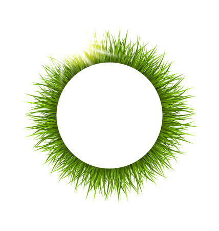 sedge: Circle frame with green grass and sunlight