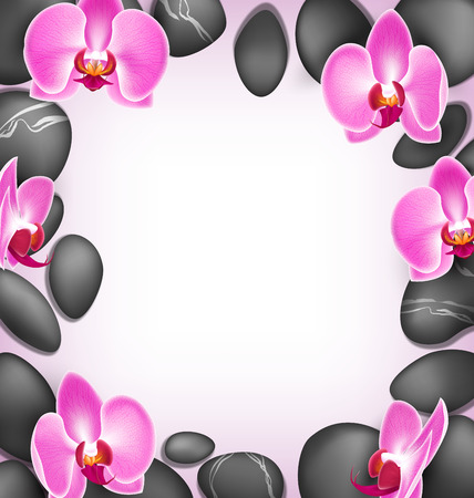 spring balance: Spa stones with orchids pink flowers like frame on pink background