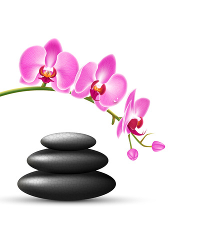 spring balance: Stack of spa stones with orchid pink flowers isolated on white background Illustration