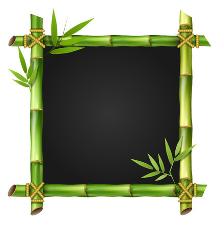 Bamboe gras frame met bladeren geïsoleerd op een witte achtergrond Stock Illustratie