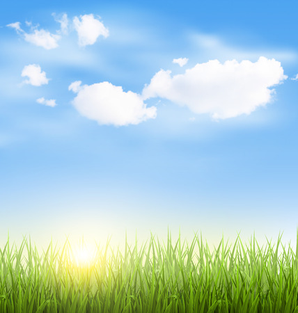 sunny sky: Green grass lawn with clouds and sun on blue sky