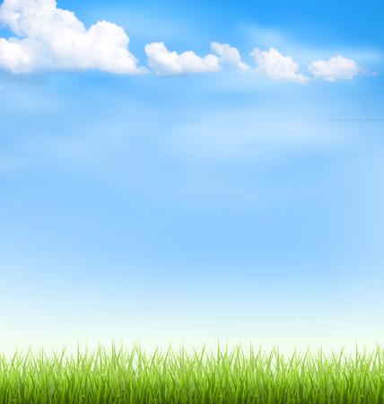 cielos abiertos: Césped de hierba verde con las nubes en el cielo azul Vectores