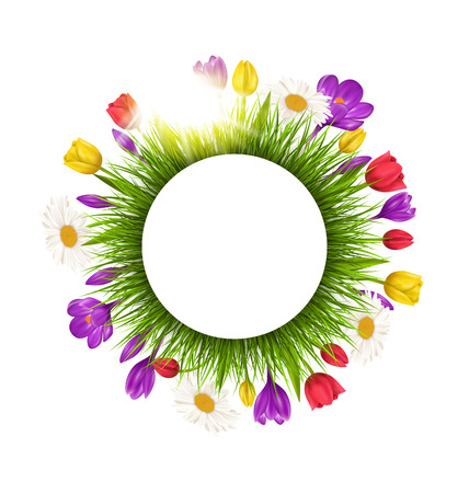 Circle frame with green grass flowers and sunlight. Floral nature background