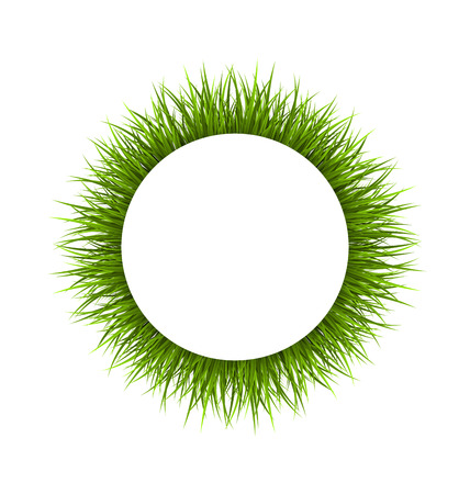 Circle frame with green grass. Floral nature background