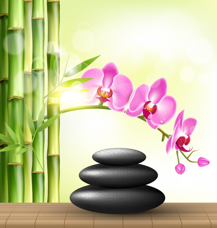 spring balance: Stack of spa stones with orchid pink flowers and bamboo and sunlight on light-green background