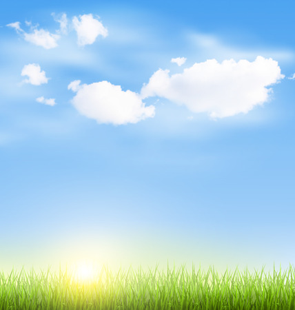 grass lawn: Green grass lawn with clouds and sun on blue sky