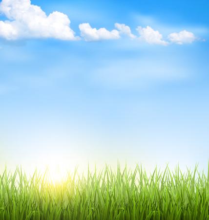 Grüne Rasen mit Wolken und Sonne am blauen Himmel Standard-Bild - 41037760