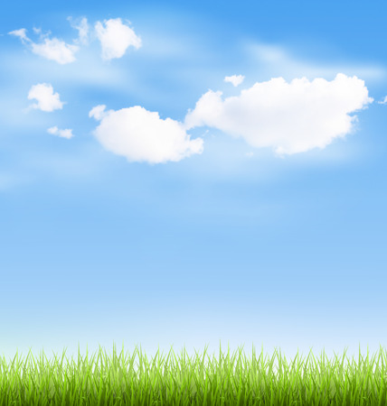 sunlight sky: Green grass lawn with clouds on blue sky