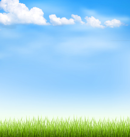 cloudiness: Green grass lawn with clouds on blue sky