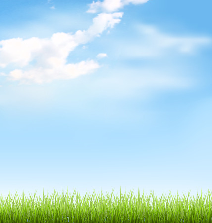 blue sky and fields: Green grass lawn with clouds on blue sky