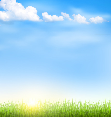 blue sky and fields: Green grass lawn with clouds and sun on blue sky