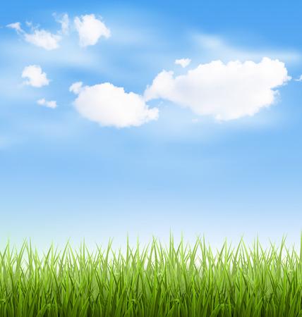 雲が青い空に緑の草の芝生 写真素材