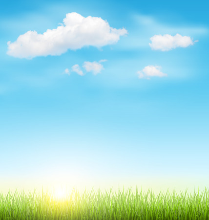 sunlit: Green Grass Lawn with Clouds and Sun on Light Blue Sky