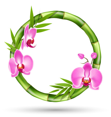 Green Bamboo Circle Frame with Pink Orchid Flowers Isolated on White Background Stock Photo