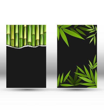 green bamboo: Green Bamboo Cards on Gray Background