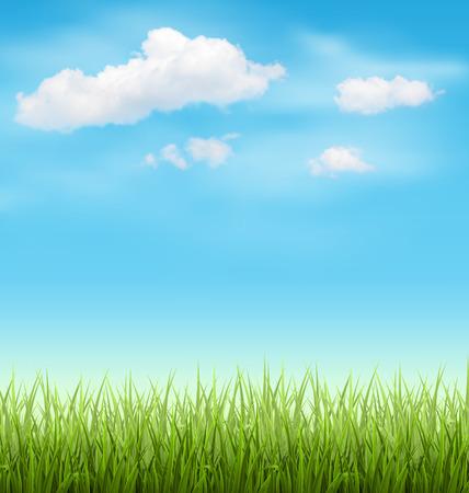 水色の空に雲が付いている緑の草芝生 写真素材