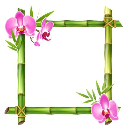 흰색 배경에 고립 된 핑크 난초 꽃과 녹색 대나무 프레임