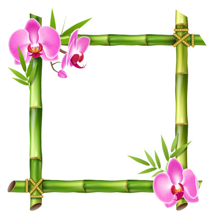 Vert cadre en bambou avec des fleurs rose orchidée isolé sur fond blanc Banque d'images