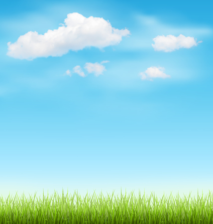 grass lawn: Green Grass Lawn with Clouds on Light Blue Sky Illustration