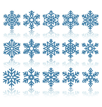cold season: Black Flat Snowflakes Icons with Reflection Isolated on White Background