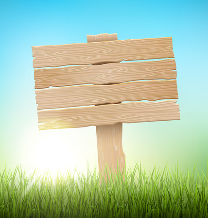eco notice: Green Grass Lawn with Signpost and Sunrise on Blue Sky. Floral Nature Spring Background