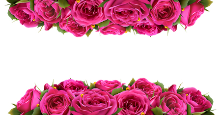 Roses Flowers Festive Border Congratulation Concept Isolated on White Background