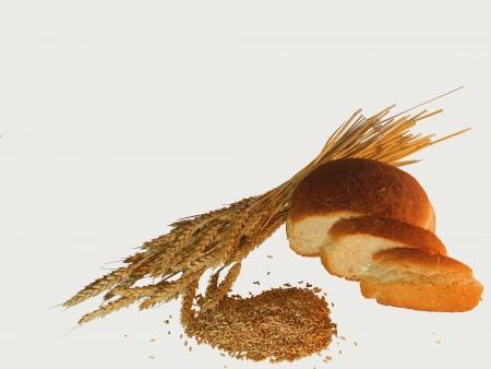 Brot, �hren und Korn