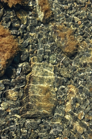 rocks under the clear water of the sea photo