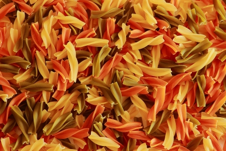 Raw italian pasta closeup photo