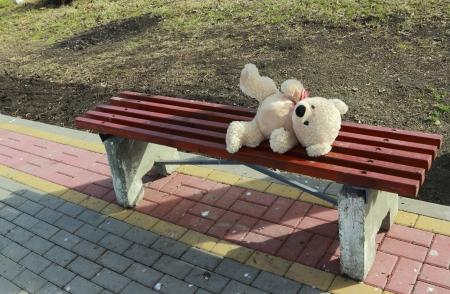 forgot bear