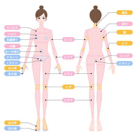 Hair loss area whole body female