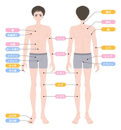 Hair loss area whole body male inner wear