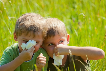 Two little boys are blowing their noses on green meadow