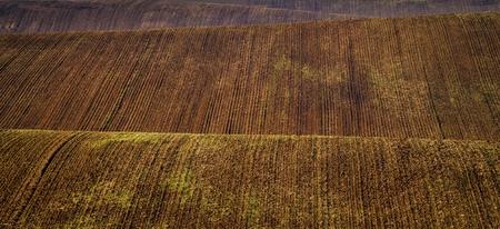 Moravian Fields - an area called the Moravian Tuscany, Czech republic, Europe