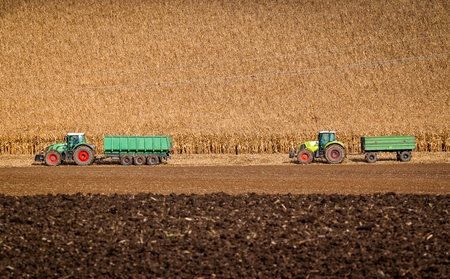 Two tractors are ready to take away harvest of corn at autumn fields