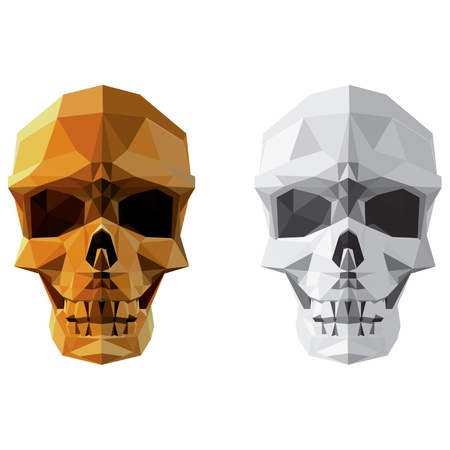 세련 된 벡터 두개골