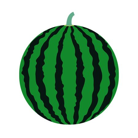 Simple vector illustration of a typical summer fruit, a large striped watermelon. Vettoriali
