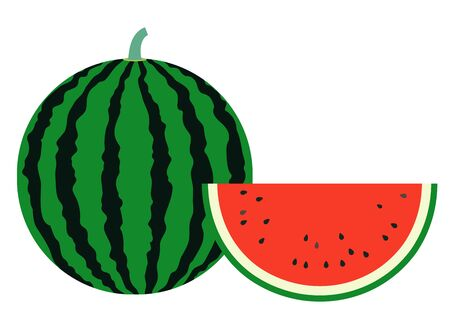A simple vector illustration of a typical summer fruit, a large striped watermelon and a red watermelon cut in half moons.