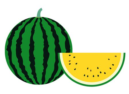 A simple vector illustration of a typical summer fruit, a round and large watermelon with stripes, and a yellow watermelon cut into half moons.